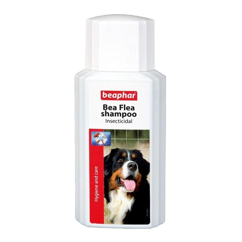 Shampooings anti-tiques pour chiens